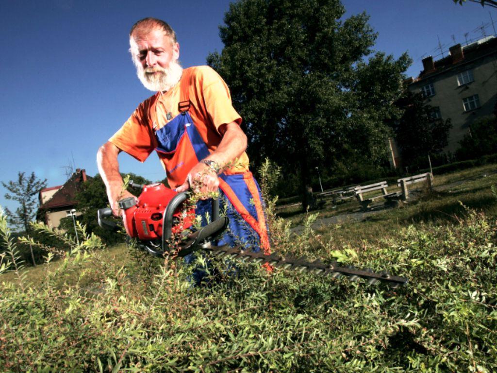 Údržba živých plotů a keřů veřejné zeleně