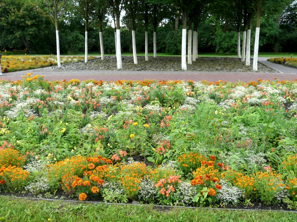 Barevný trvalkový záhon v parku