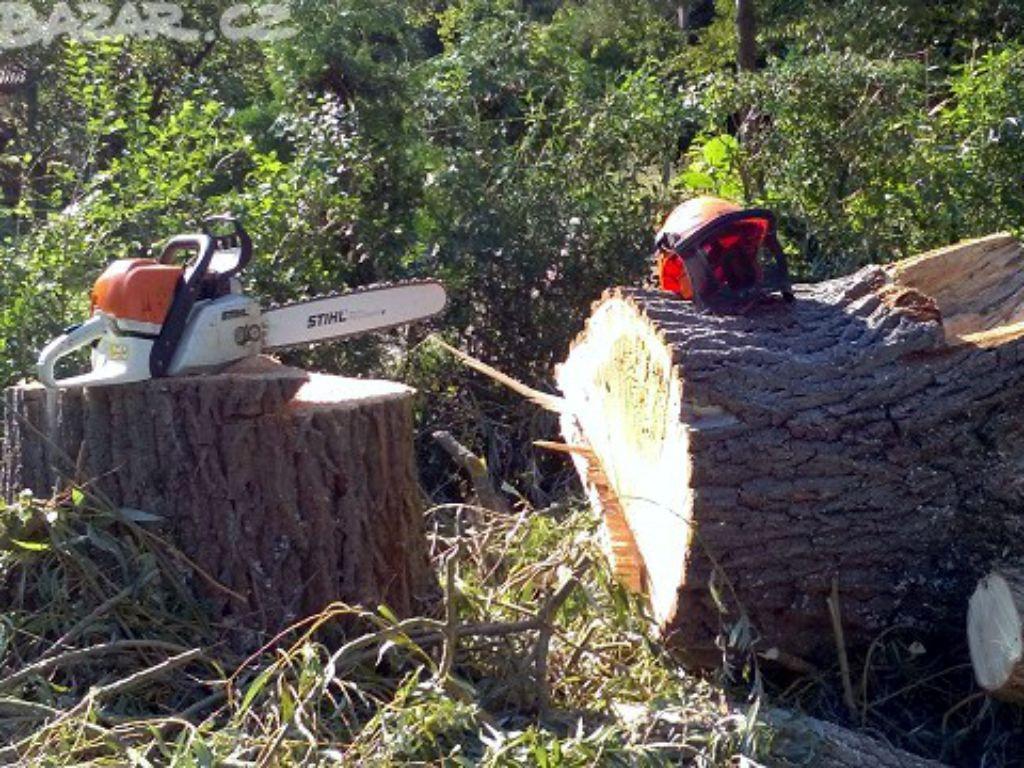 Kácení stromu pádem do volného prostoru