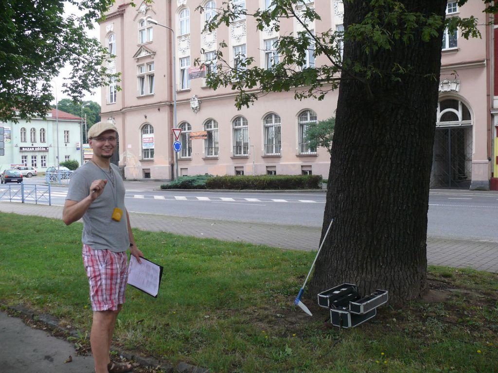 Kontrola stability stromů a biologické posouzení kořenů
