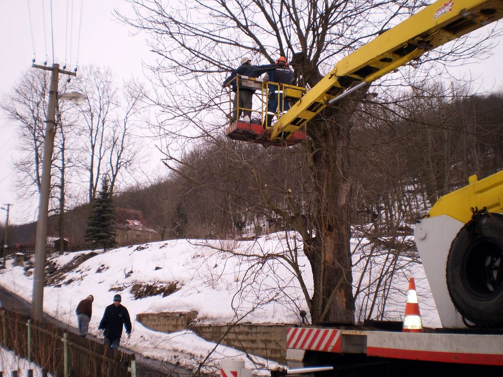 Odstranění stromy z plošiny auta