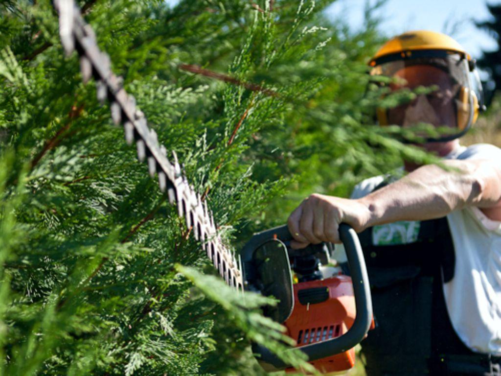 Pečlivý tvarovací střih plotů a keřů