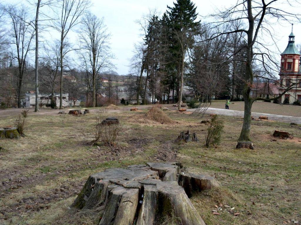 Posouzení starého parku a následný rozvoj záchrana