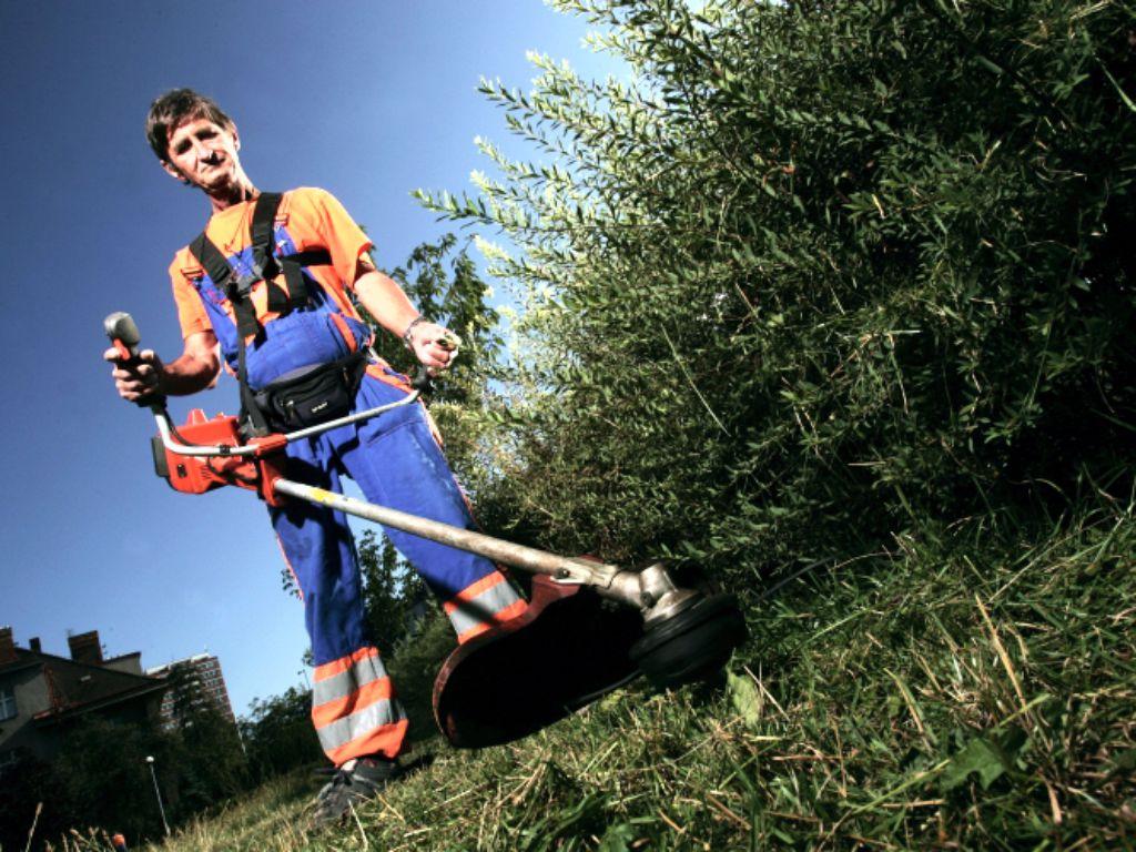 Sekání přerostlé trávy křovinořezem