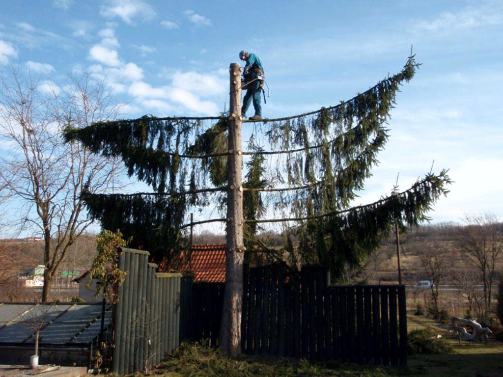 Za použití arboristy a horolezecké techniky