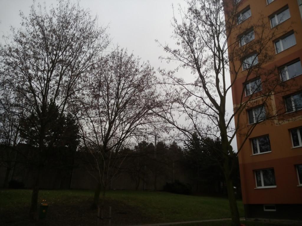 Proč mají zásah provádět odborníci Cílem stromolezců bude zlepšit zdravotní stav stromů a zvýšit jejich bezpečnost pro okolí. Upozorní také, proč je z hlediska budoucnosti stromů zásadní, aby zásahy prováděli zkušení odborníci. Zdroj: http://litomericky.denik.cz/z-regionu/odbornici-dobrovolne-osetri-triadvacet-stromu-20150122-zdjh.html