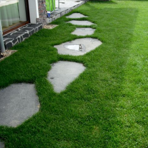 Čedičové nášlapné kameny v trávníku