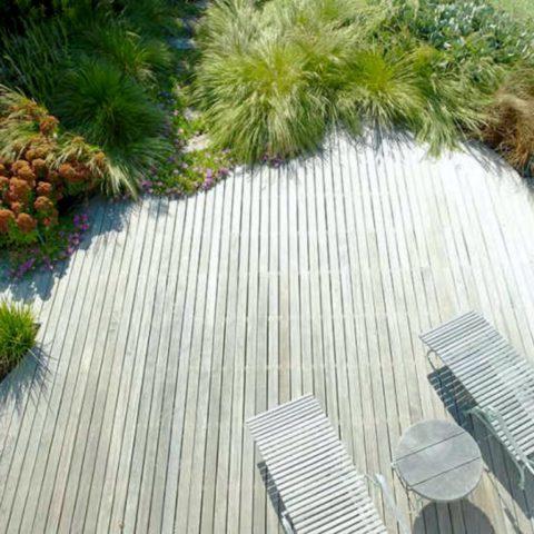 Terasa s hustou pěknou travnatou výsadbou s trvalky