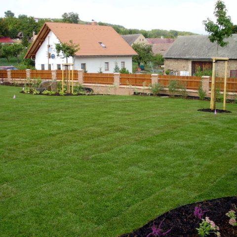 Když je položen kobercový trávník